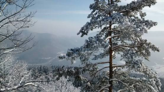 biela skala, volovské vrchy