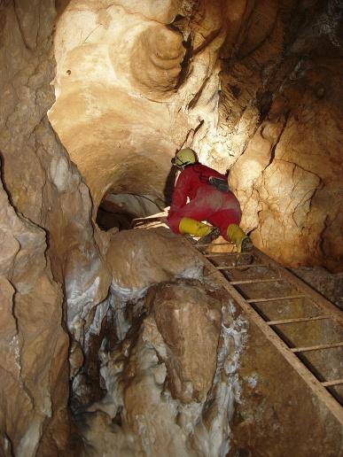 Na rebríku (Autor: František Miháľ)